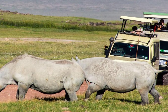 4 Days Tanzania Family Luxury Safari photo 6