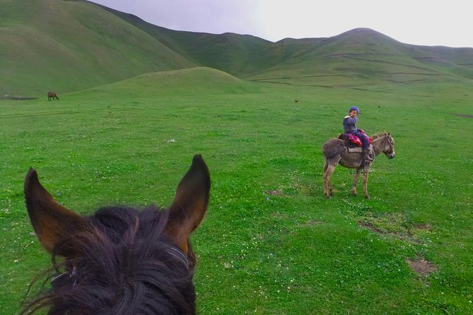Horse back riding in mountains