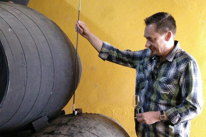 Discover Sherry in Jerez photo 12