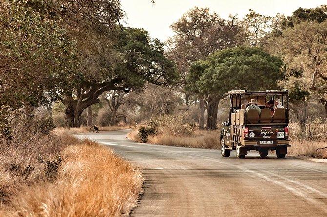 3 Day Central Kruger National Park - Private Safari Tour