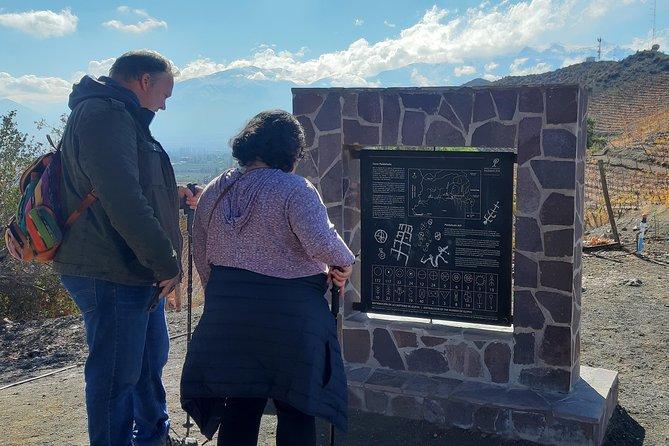 Private Full-Day Inca Adventure: Alpacas, Petroglyphs and Wine