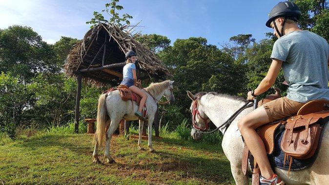 Spectacular Jungle Tour on Horseback