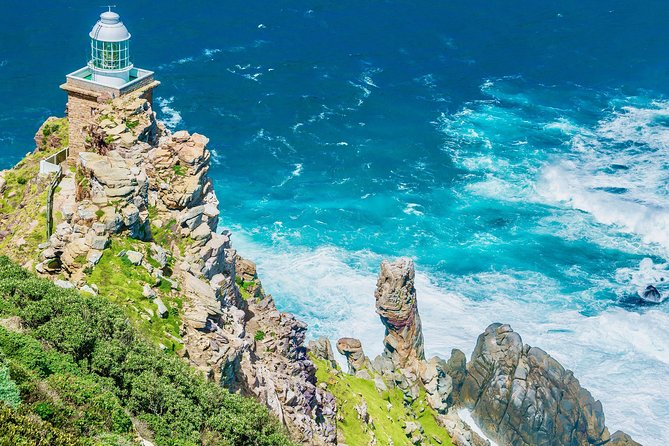 Cape Point and Boulder's Beach Penguins Tour: Including Park fee
