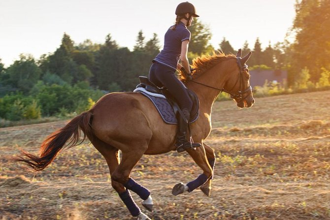 Desert Horse Riding- 1 Hour