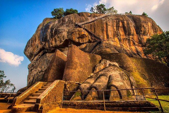 Sigiriya & Minneriya National Park Safari Full Day Tour