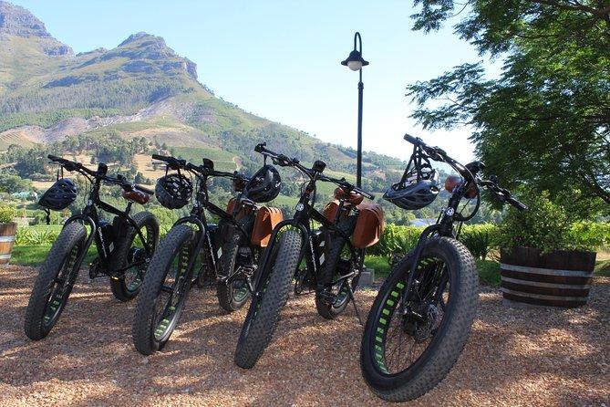 Vinebikes - E-Bike Wine Tour Banhoek (Half Day)