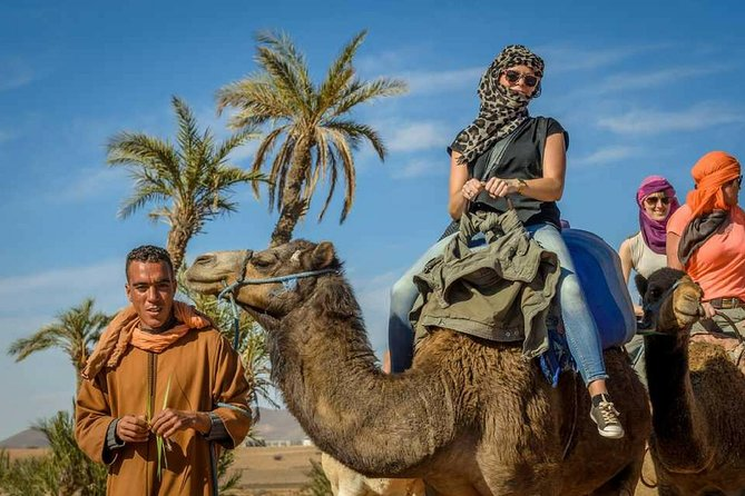 Guided Agadir Sunset Camel Ride and Dinner photo 9