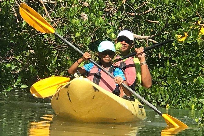Marco Island , Boating, Kayak & Walking Eco-Tour