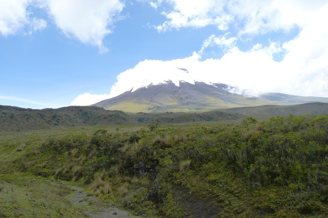 """Cotopaxi Half Day Tour With Optional Hotel Pick-Up & Drop-Off - """"Small Group"""""""