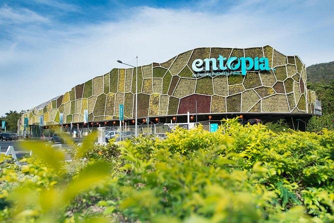 Penang Half Day City Tour Including Entopia Butterfly Farm