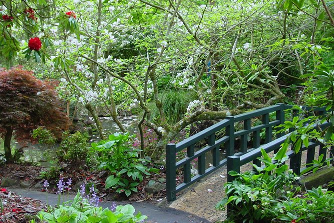 Dunedin Shore Excursion: Sights, Glenfalloch Gardens, Chinese Gardens & Museum