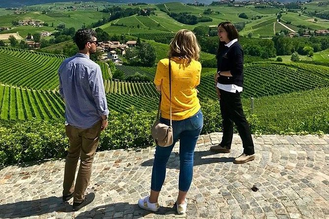 Langhe Wine Tour and Tasting - One day with a Somm
