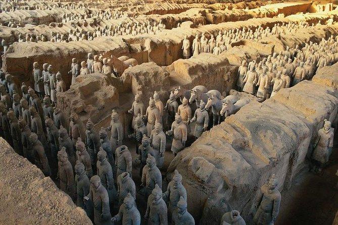 Xian Group Tour to Terracotta Warriors and Banpo Museum