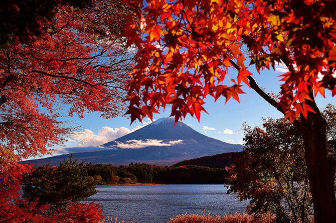 Mt. Fuji 5th Station, Lake Kawaguchi & Seasonal Fruits Picking from Tokyo photo 8