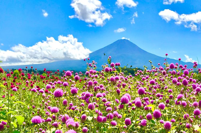 Mt. Fuji 5th Station, Lake Kawaguchi & Seasonal Fruits Picking from Tokyo photo 12