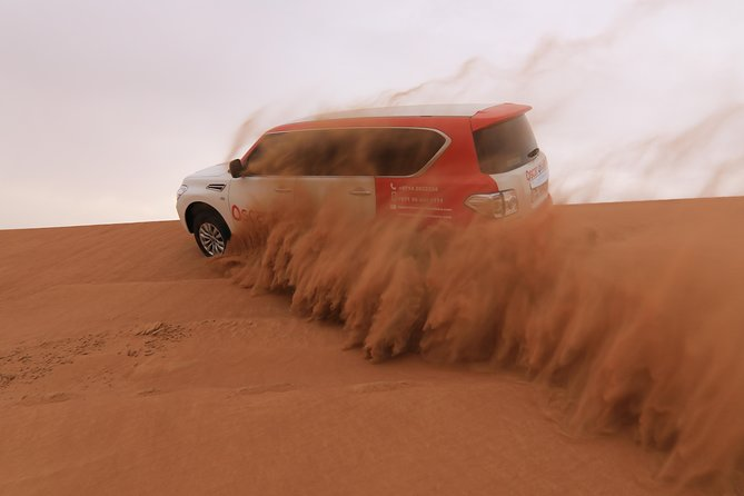 High Red Dunes with Camel Ride, Sandboarding, Falcon Show and VIP BBQ Dinner