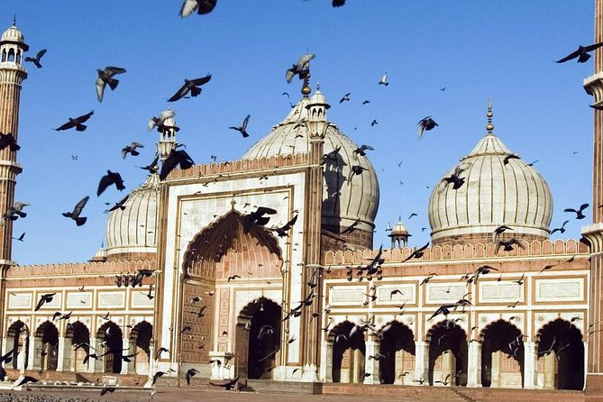 Private Old and New Delhi - Best of Delhi 8 Hours Tour photo 6