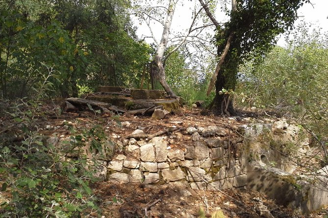 Hiking in the Countryside - Outdoor Acitvities in Corfu photo 19