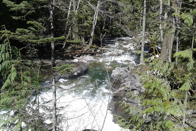 Waterfalls and Cascade Mountains Private Day Trip