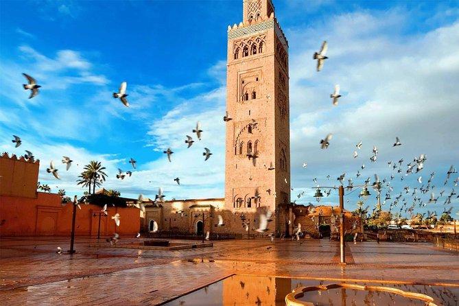 Agadir - Marrakech One Full Day Trip from Agadir