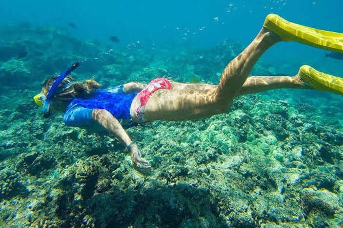 Snorkeling At Blue Lagoon And Tanjung Jepun