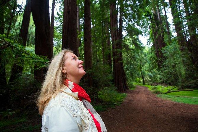 Muir Woods Expedition Tour of Coastal Redwoods photo 3
