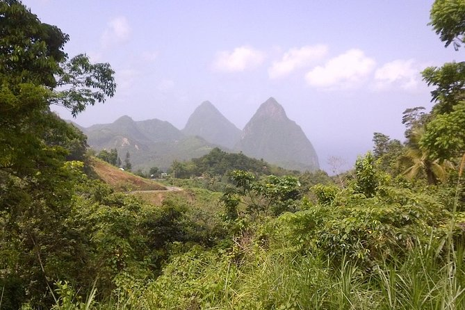 St. Lucia Tet Paul Nature Trail Tour