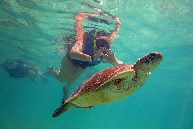Akumal is turtles encounter.
