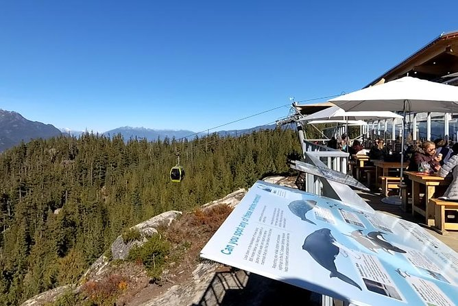 Capilano Bridge and Sea to Sky Gondola Private Tour photo 10