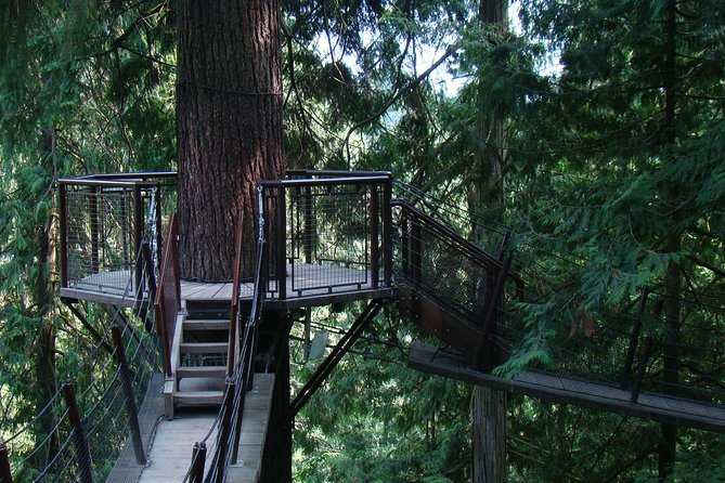 Capilano Bridge and Sea to Sky Gondola Private Tour photo 8