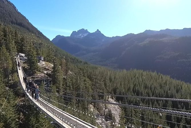 Capilano Bridge and Sea to Sky Gondola Private Tour photo 12