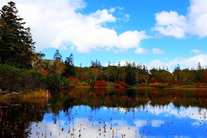 Niseko Panorama Route and Shinsen Marsh Tour in Early Autumn!