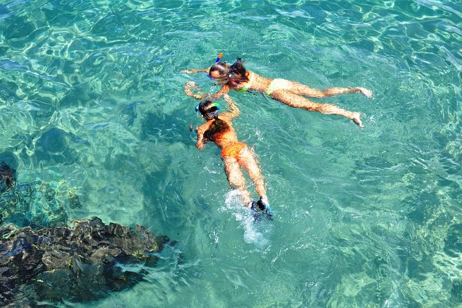 Pristine snorkelling off Koh Samui