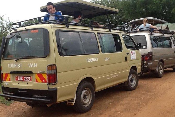 3 Days Primate Tour Kibale Forest National Park