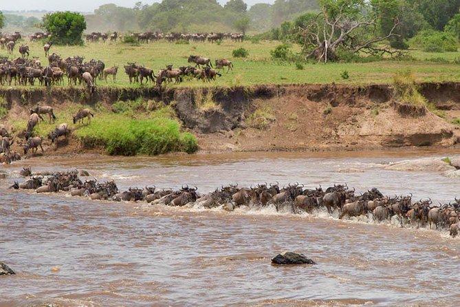 8 Days and 7 Nights Great Migration Safari Tanzania