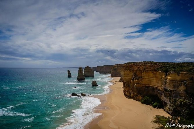 1 day Great Ocean Road 12 apostles, kangaroos and koalas tour photo 3