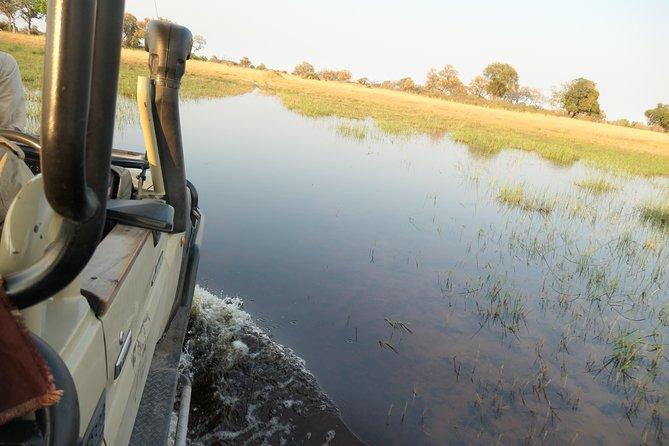 10-Day / 9-Night — Best of Botswana Safari: Xakanaxa, Khwai, & Savuti