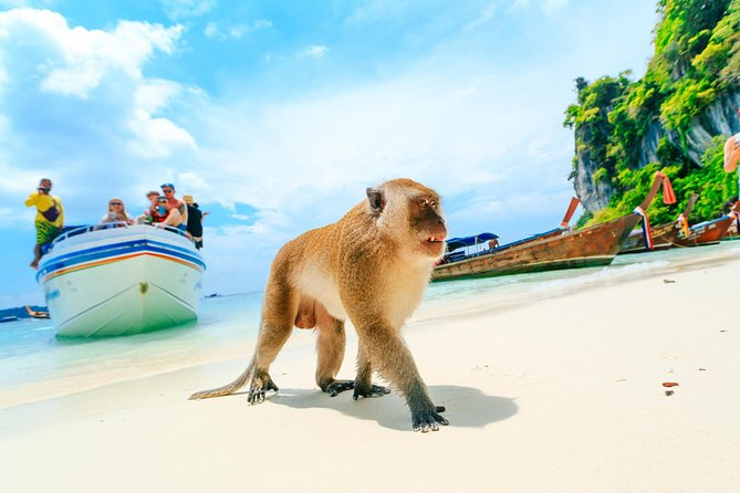 Phi Phi Island By Speed Boat From Phuket