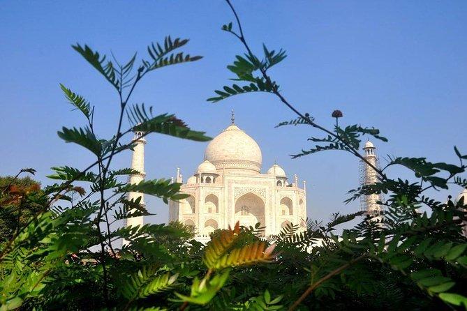 One Day Taj Mahal Tour from Jaipur by Car