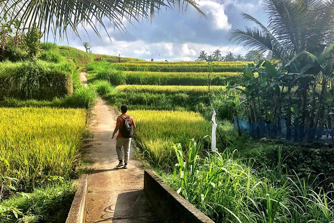 Rice Field Trekking and Village Tour