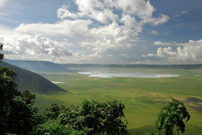 Ngorongoro Day Trip ( Group joining )