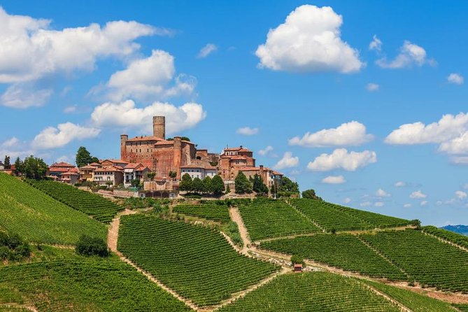 Alba Wine Tours, Private Tasting Experience around Langhe area.
