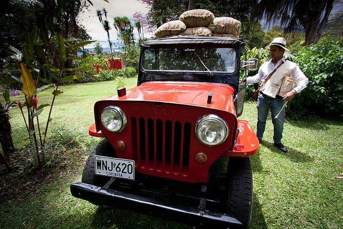 Coffee Tour Hacienda Coloma