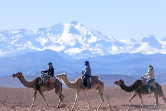 Day Trip:Berber Villages and 4 Valleys Atlas Mountains &Waterfu l& camel Ride