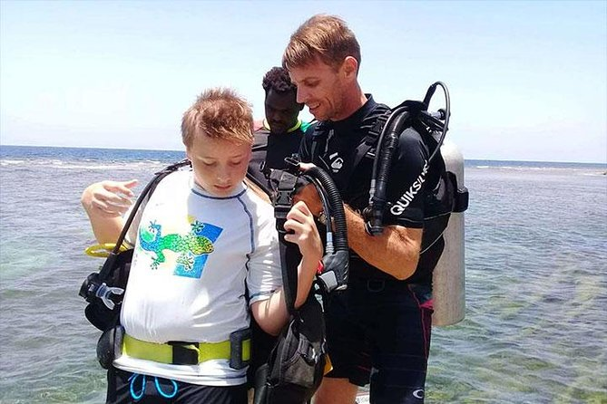 Non Certified Diving Experience plus Transportation