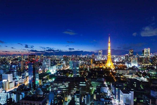Private Car Tokyo Tour