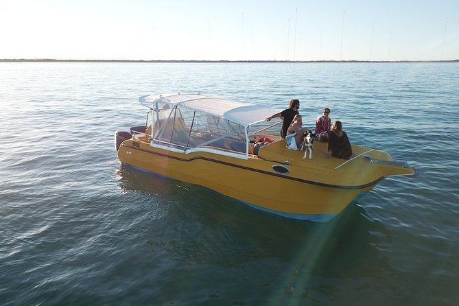 Turtle tours on the Ningaloo Reef, Exmouth. 1/2 day cruise.