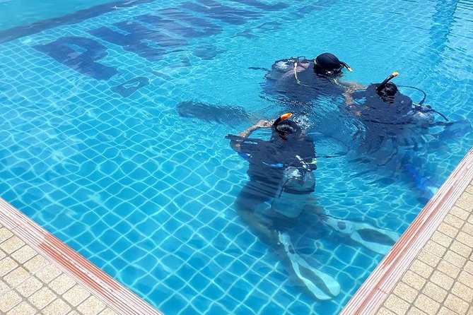 Scuba diving lesson for beginners (1 hour ) photo 6