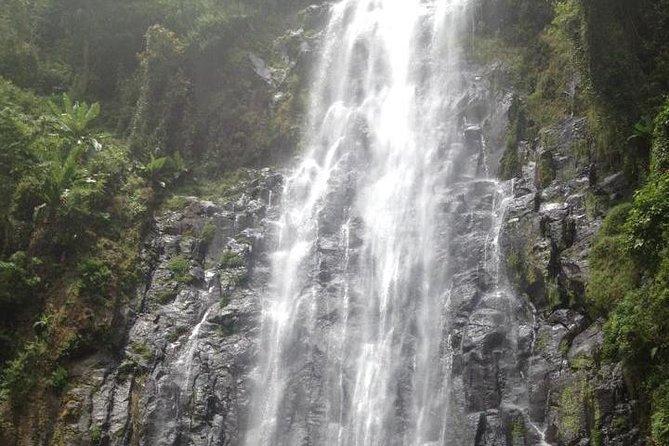 Materuni Waterfalls & Coffee Tour from Moshi