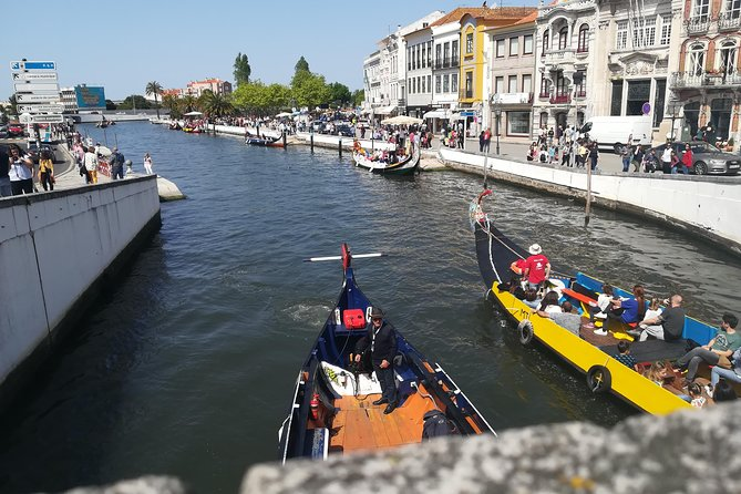 AVEIRO & COIMBRA - Full day tour with specialized Guide photo 7